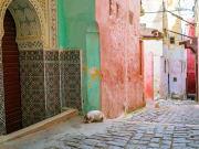 Morocco_Meknes_Medina_shutterstock_672496399