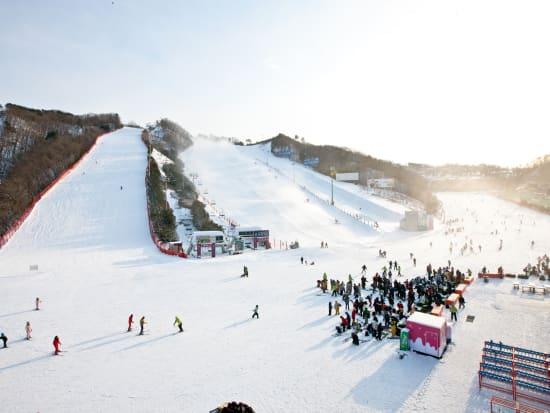 Vivaldi Park Ski World
