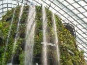 Singapore_Marina Bay Sands_CloudForest_shutterstock_368696489