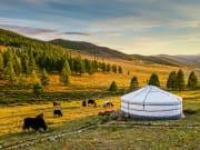 Mongolia_valley_shutterstock_600892928
