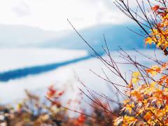 Kyoto_Amanohashidate_autumn_red_leaves_shutterstock_668616262