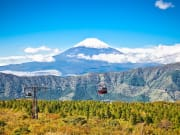 See the glorious Mt. Fuji from the Hakone Ropeway