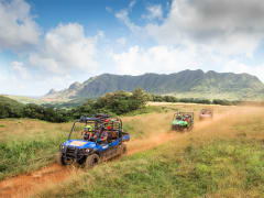 Best Kauai Deals: Kauai Discount Tours, Activity Coupons