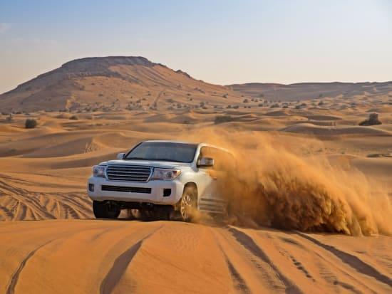 UAE, Dubai Desert Safari