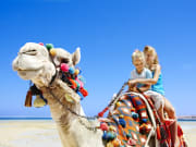 UAE, Dubai Desert Safari, Camel Ride
