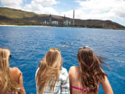 dolphins-girls-watching