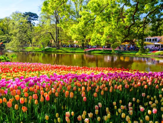 marvel at the vibrant tulips in keukenhof - Amsterdam Garden