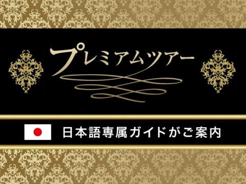プレミアム・ツアー(専用車&専属日本語ガイド)