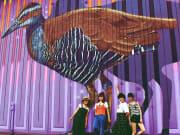 Koko Bird