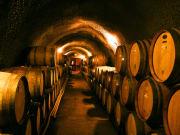 California_Toast Tours_Winery Barrels