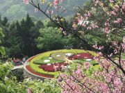 flower clock in yangmingshan national park taiwan