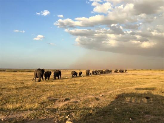 ケニアの絶景を満喫!キリマンジャロ山 & アンボセリ国立公園3日間<2 ...