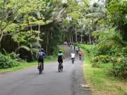 Bike to Pele1