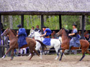 See an exciting horse show in Puszta