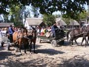 Horse show is Puszta