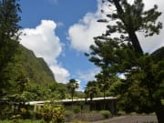 Iao-Valley-limo-tour-with-Stardust-Hawaii-web-1024x683