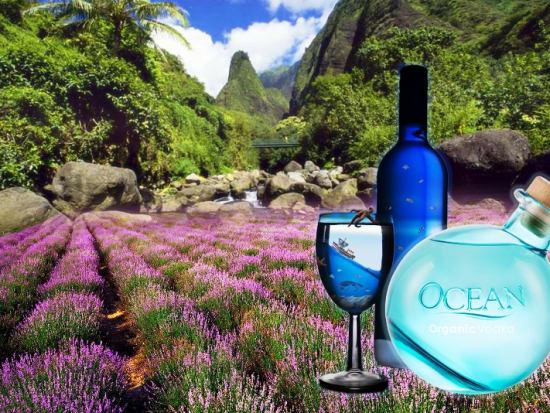 Maui Lavender Farm Walking Tour Ocean Vodka Distillery Tasting