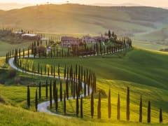 Italy, Tuscany, road, Via Chiantigiana, chianti