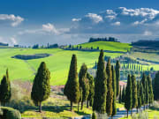 Italy_Tuscan-countryside