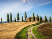 Italy_Tuscan-landscape
