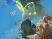 Cancun_Snorkeling_Maya Land - Copy