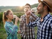 Wine tasting wine tour