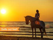 USA_Hawaii_Sunset-Horseback-Ride