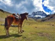Peru_rainbowmountain_shutterstock_1075357796