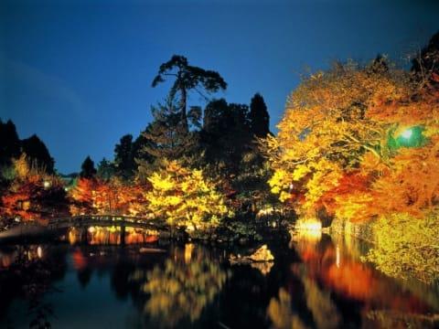 季節限定ツアー・京の祭・特別拝観