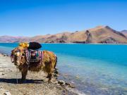 Tibet_ shutterstock_585119959