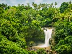 shutterstock_619174238_tegenungan-waterfall