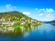 Rhine valley, river, Germany