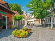 Quaint street of Szentendre