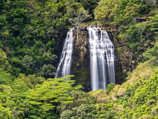 USA_Hawaii_Waterfalls_shutterstock_1104989252
