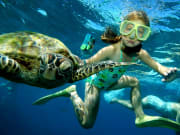 sunlover reef cruises girl swimming with turtle
