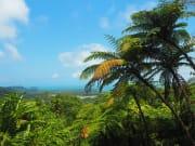 Alexandra Range Lookout scenic views