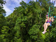 Jungle Surfing zipline above daintree rainforest