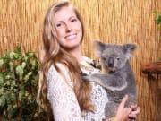 koala and wildlife park woman cuddling a koala
