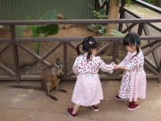 koala and wildlife park twins children