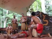 aboriginal performance pamagirri tribe