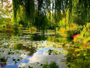 France_Giverny_Monet_s_Garden_