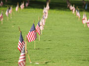 US_Hawaii_Oahu_graves_flags_Punchbowl_cemetery_shutterstock_115448230