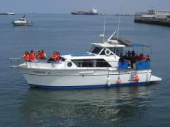 Palomino cruise1