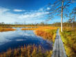 Estonia_Lahemaa_National_Park_123RF_63246320_ML