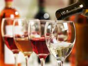 Wine Tasting, Wine Tour