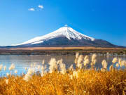 Japan_Japan_Mt. Fuji_shutterstock_240908023