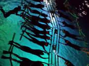 Hula Kai Manta Ladder