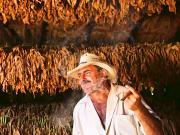vinales-finca-tabaco-small