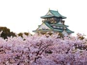 Japan_Osaka_Osaka_Castle_Spring_Sakura_Cherry_Blossoms_shutterstock_677489953