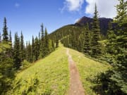Seattle_Evergreen Escapes_Olympic National Park